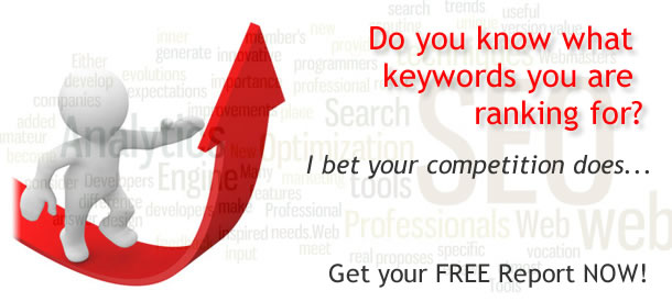 free search engine ranking report in ontario