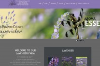 Our Previous Work – www.peclavender.com